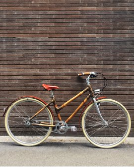 Woman Bamboo Bike